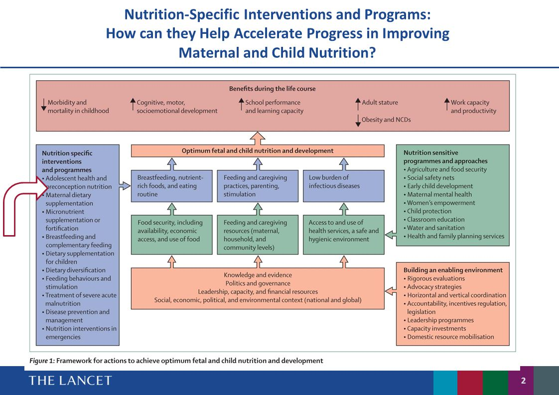 Nutrition-Specific Interventions and Programs: How can they Help Accelerate Progress in Improving Maternal and Child Nutrition? 2