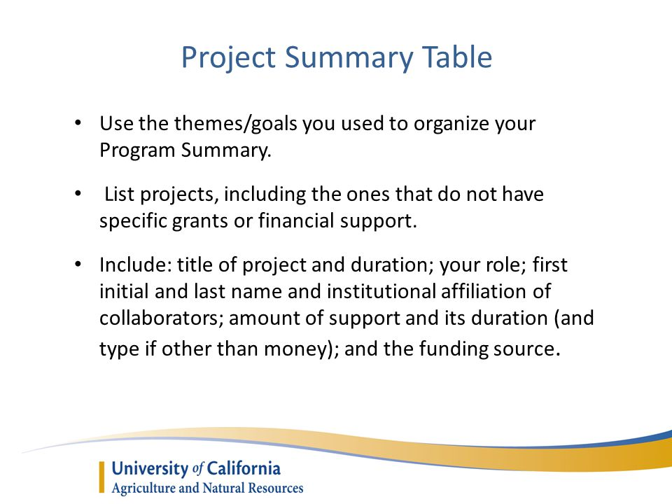 Project Summary Table Use the themes/goals you used to organize your Program Summary. List projects, including the ones that do not have specific gran