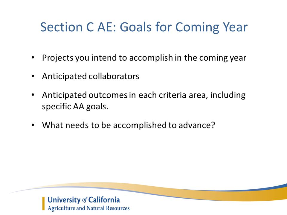 Section C AE: Goals for Coming Year Projects you intend to accomplish in the coming year Anticipated collaborators Anticipated outcomes in each criteria area, including specific AA goals.