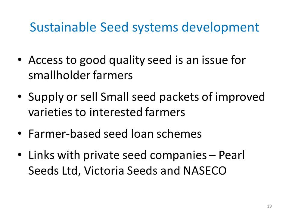 Sustainable Seed systems development Access to good quality seed is an issue for smallholder farmers Supply or sell Small seed packets of improved varieties to interested farmers Farmer-based seed loan schemes Links with private seed companies – Pearl Seeds Ltd, Victoria Seeds and NASECO 19