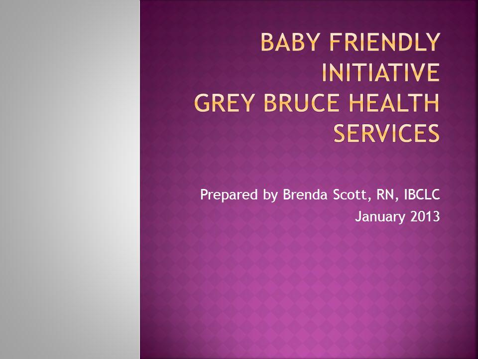 Prepared by Brenda Scott, RN, IBCLC January 2013