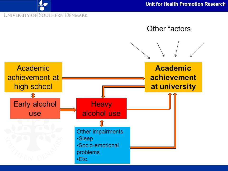 Unit for Health Promotion Research Academic achievement at university Academic achievement at high school Early alcohol use Heavy alcohol use Other im