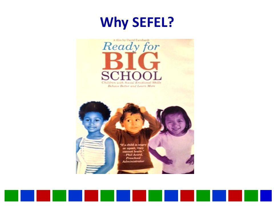Why SEFEL?