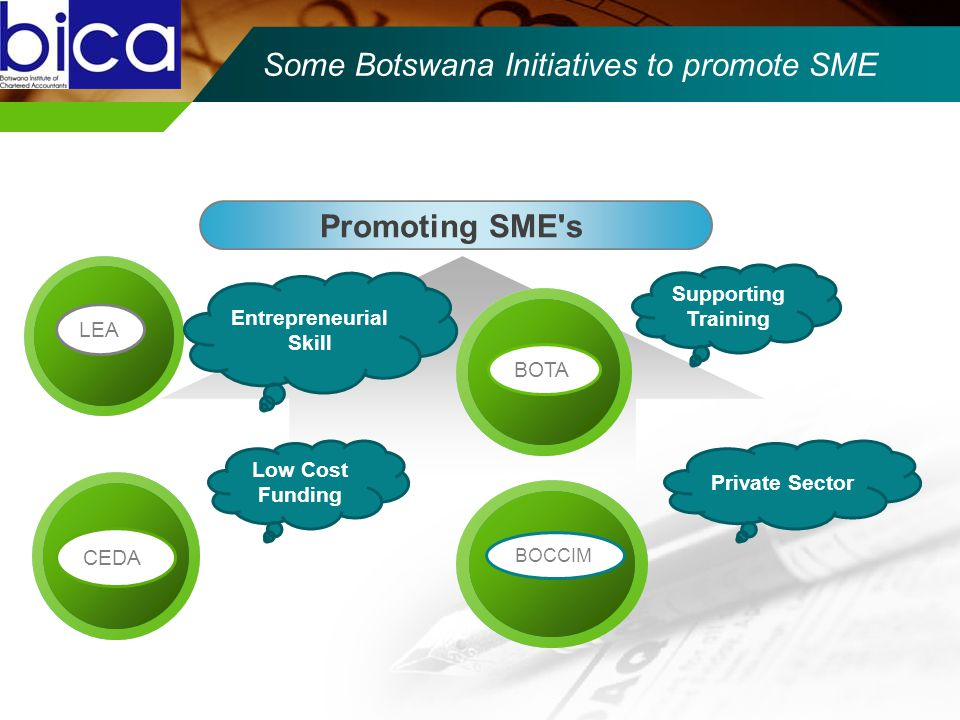 CEDA LEA Some Botswana Initiatives to promote SME Promoting SME s LEABOTACEDA Entrepreneurial Skill CEDA Low Cost Funding BOTA Supporting Training BOCCIM Private Sector