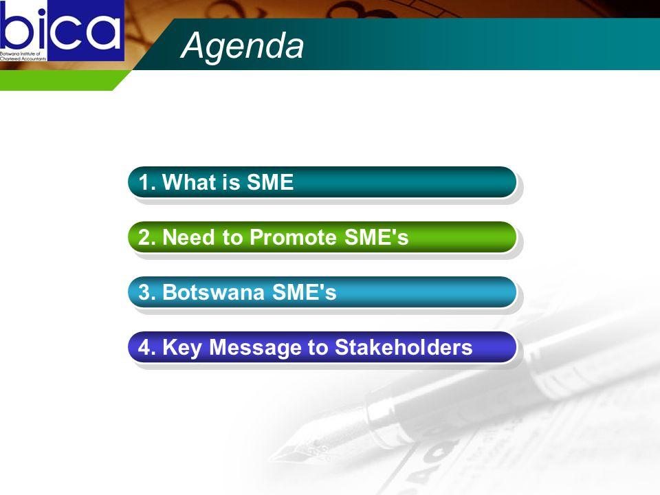 Agenda 1. What is SME 2. Need to Promote SME's 3. Botswana SME's 4. Key Message to Stakeholders