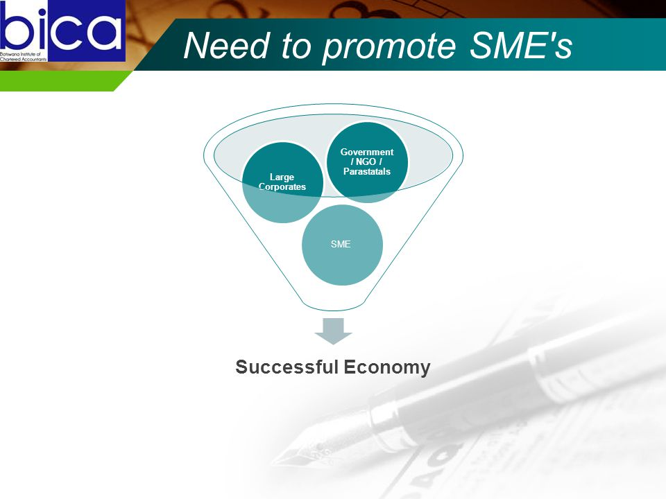 Need to promote SME s Successful Economy SME Large Corporates Government / NGO / Parastatals