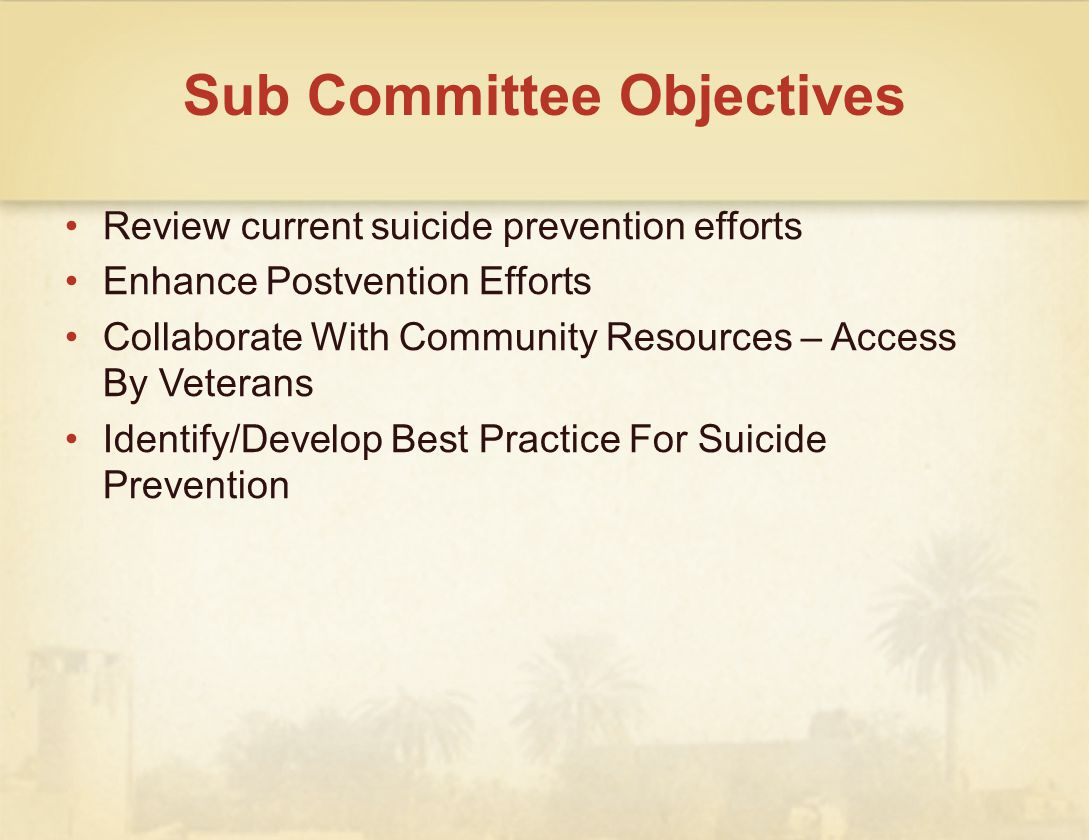 Sub Committee Objectives Review current suicide prevention efforts Enhance Postvention Efforts Collaborate With Community Resources – Access By Veterans Identify/Develop Best Practice For Suicide Prevention