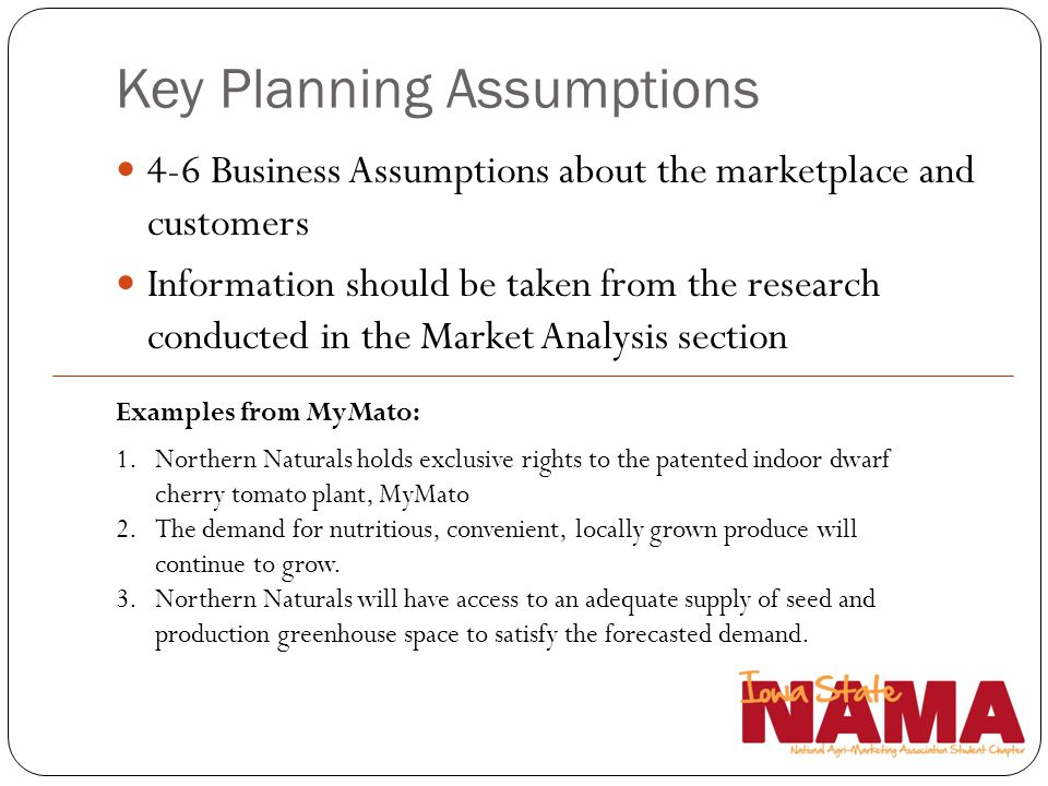 Key Planning Assumptions 4-6 Business Assumptions about the marketplace and customers Information should be taken from the research conducted in the M