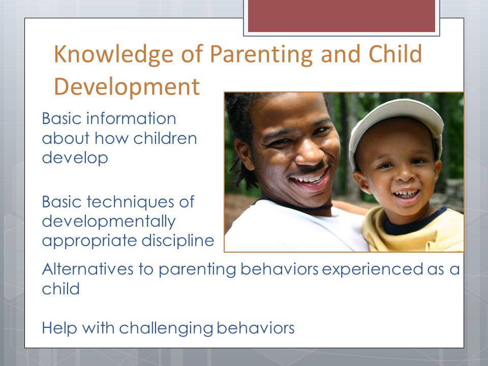 Basic information about how children develop Basic techniques of developmentally appropriate discipline Alternatives to parenting behaviors experience