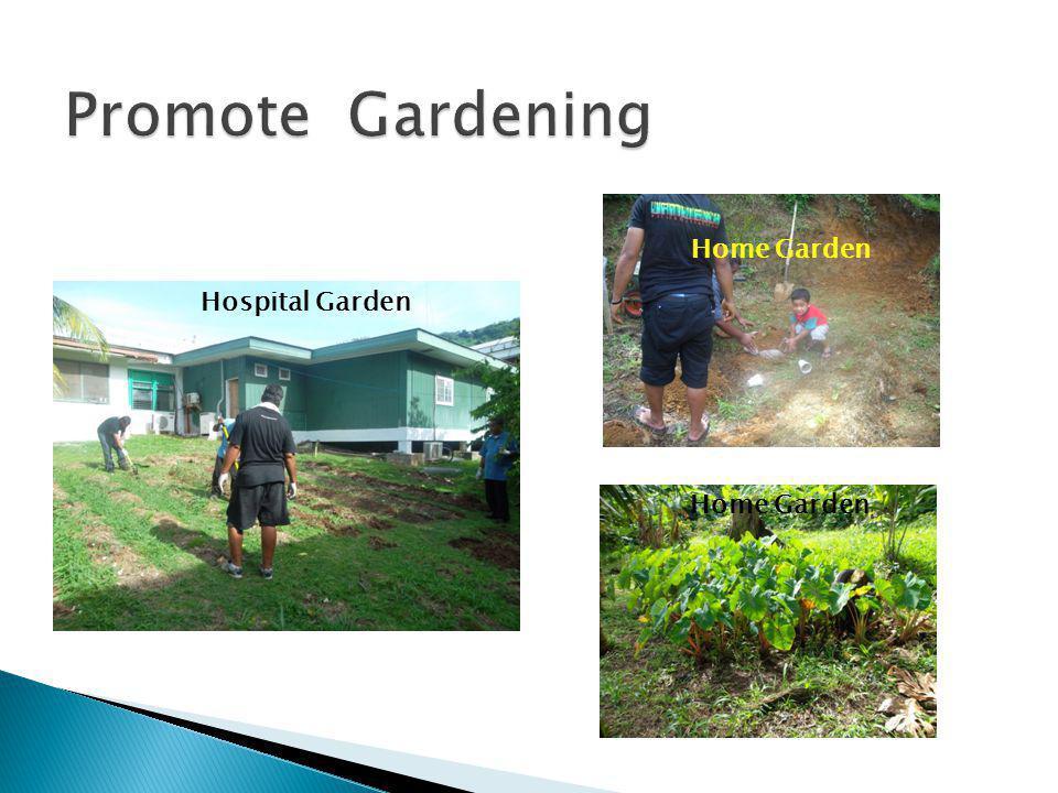 Hospital Garden Home Garden