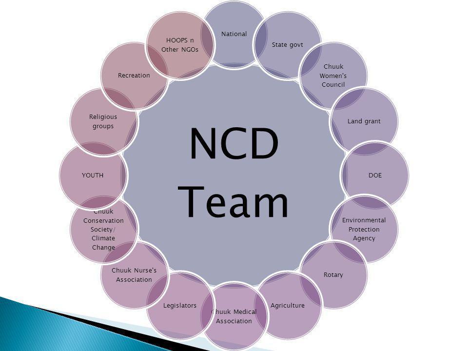 NCD Team NationalState govt Chuuk Women's Council Land grantDOE Environmental Protection Agency RotaryAgriculture Chuuk Medical Association Legislator