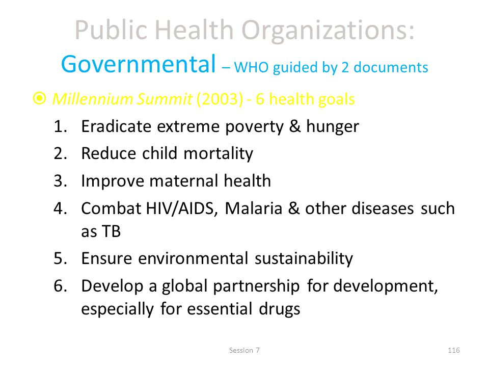Public Health Organizations: Governmental – WHO guided by 2 documents Millennium Summit (2003) - 6 health goals 1.Eradicate extreme poverty & hunger 2