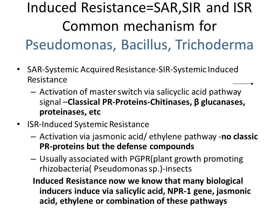 Induced Resistance=SAR,SIR and ISR Common mechanism for Pseudomonas, Bacillus, Trichoderma SAR-Systemic Acquired Resistance-SIR-Systemic Induced Resis