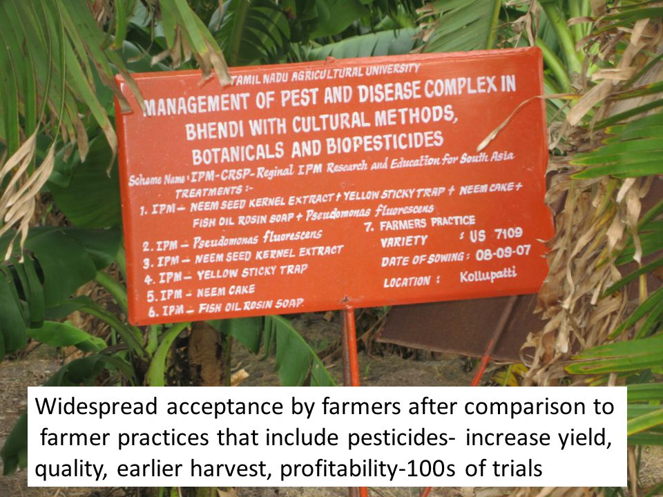 Widespread acceptance by farmers after comparison to farmer practices that include pesticides- increase yield, quality, earlier harvest, profitability