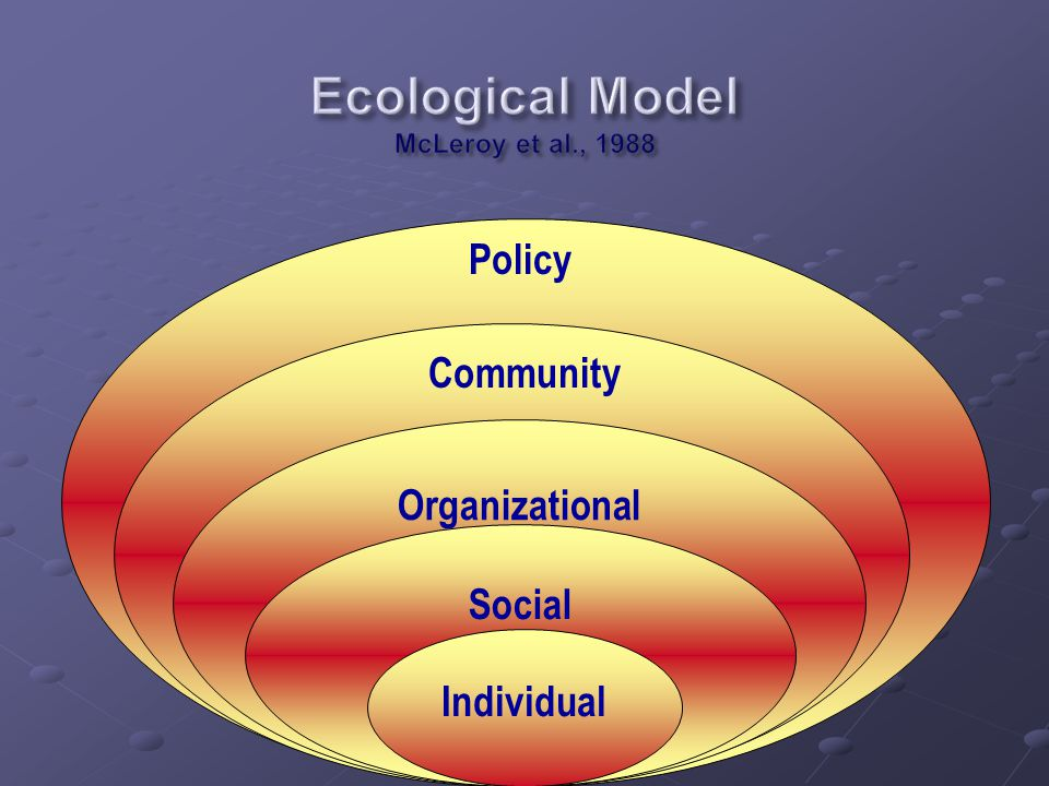 Public Policy Community Organizational Social Individual Community Policy