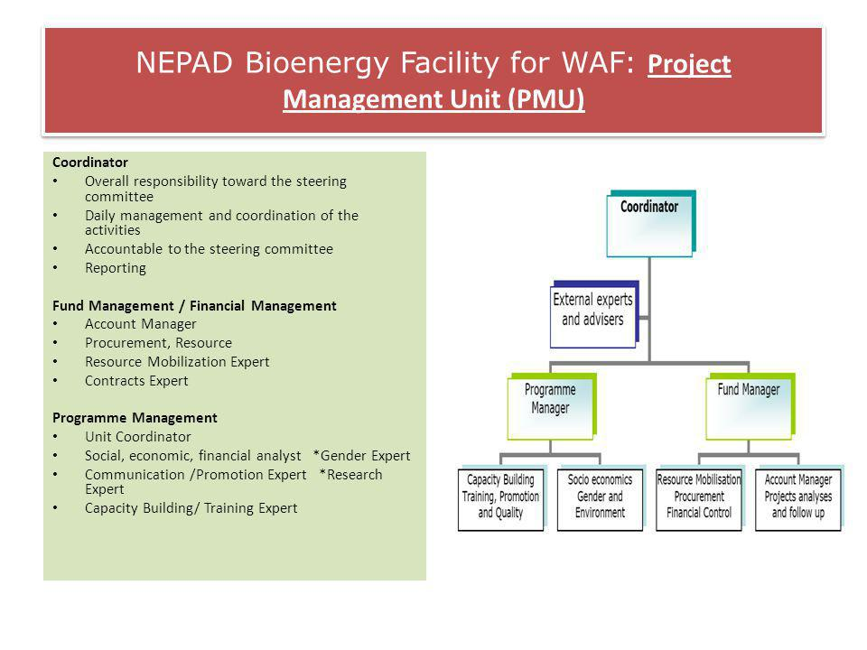 NEPAD Bioenergy Facility for WAF: Project Management Unit (PMU) Coordinator Overall responsibility toward the steering committee Daily management and coordination of the activities Accountable to the steering committee Reporting Fund Management / Financial Management Account Manager Procurement, Resource Resource Mobilization Expert Contracts Expert Programme Management Unit Coordinator Social, economic, financial analyst *Gender Expert Communication /Promotion Expert *Research Expert Capacity Building/ Training Expert