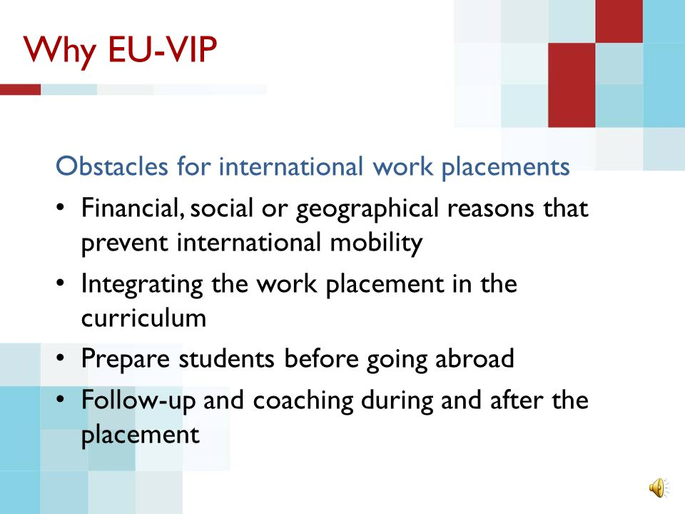Why EU-VIP Why international work placements.