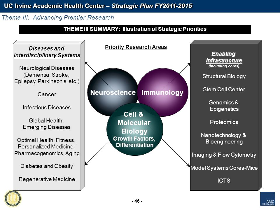UC Irvine Academic Health Center – Strategic Plan FY2011-2015 - 46 - Priority Research Areas THEME III SUMMARY: Illustration of Strategic Priorities E