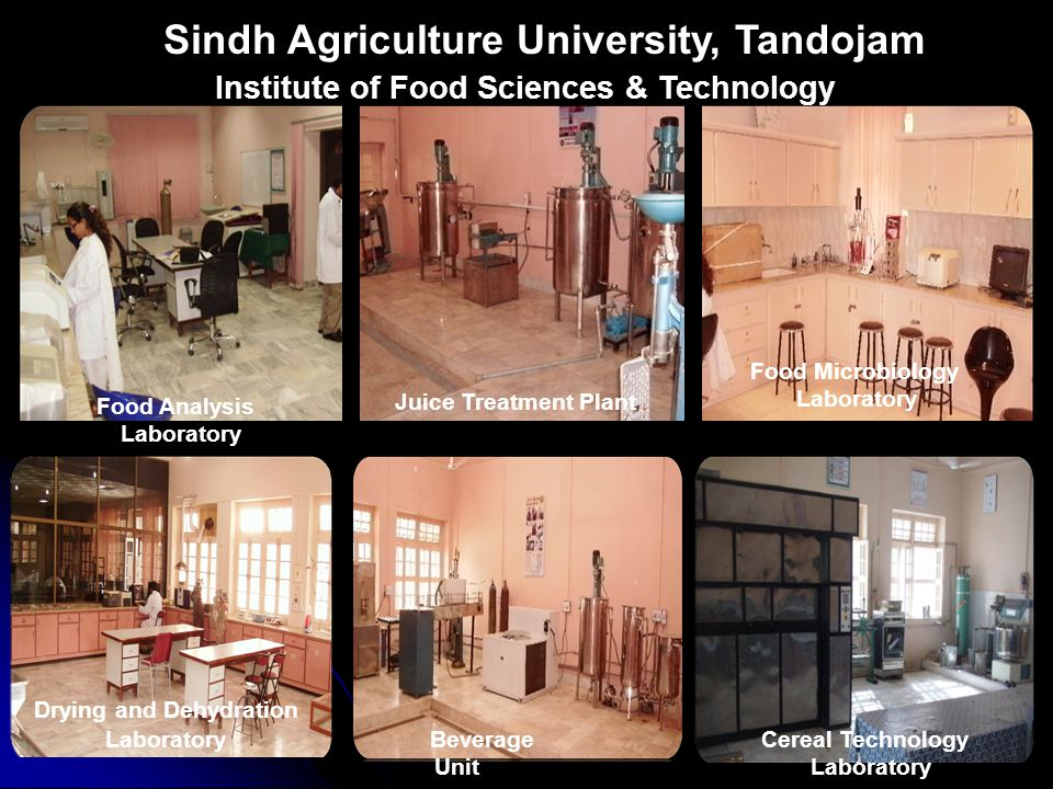 Sindh Agriculture University, Tandojam Juice Treatment Plant Beverage Unit Drying and Dehydration Laboratory Food Analysis Laboratory Food Microbiology Laboratory Cereal Technology Laboratory Institute of Food Sciences & Technology