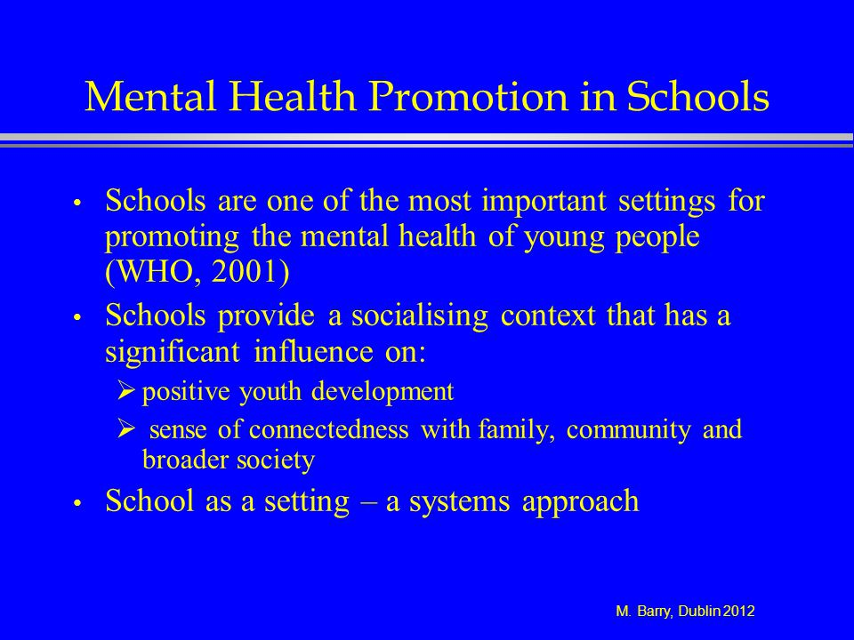 M. Barry, Dublin 2012 Mental Health Promotion in Schools Schools are one of the most important settings for promoting the mental health of young peopl
