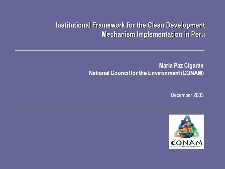 María Paz Cigarán National Council for the Environment (CONAM) December 2003 Institutional Framework for the Clean Development Mechanism Implementatio