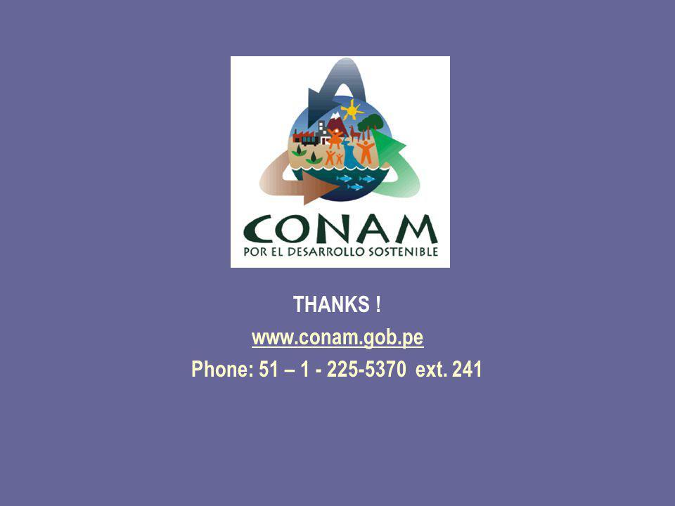 THANKS ! www.conam.gob.pe Phone: 51 – 1 - 225-5370 ext. 241