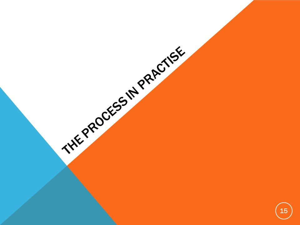 THE PROCESS IN PRACTISE 15