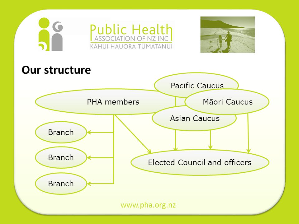 Our structure www.pha.org.nz PHA members Branch Elected Council and officersAsian CaucusPacific CaucusMāori Caucus