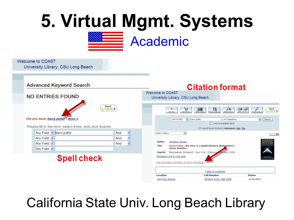 5. Virtual Mgmt. Systems Academic MIT Library (Mass.), NIU Library ( I ll.)