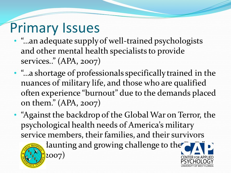 Primary Issues …an adequate supply of well-trained psychologists and other mental health specialists to provide services.. (APA, 2007) …a shortage of