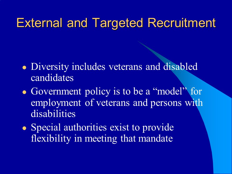 External and Targeted Recruitment Diversity includes veterans and disabled candidates Government policy is to be a model for employment of veterans an