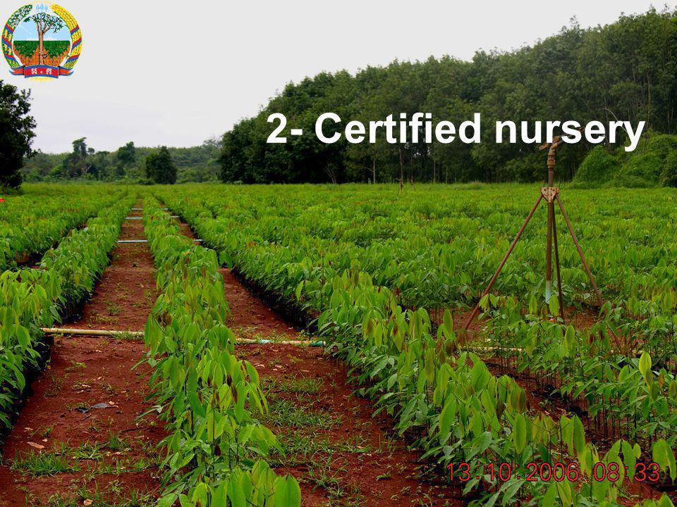 2- Certified nursery