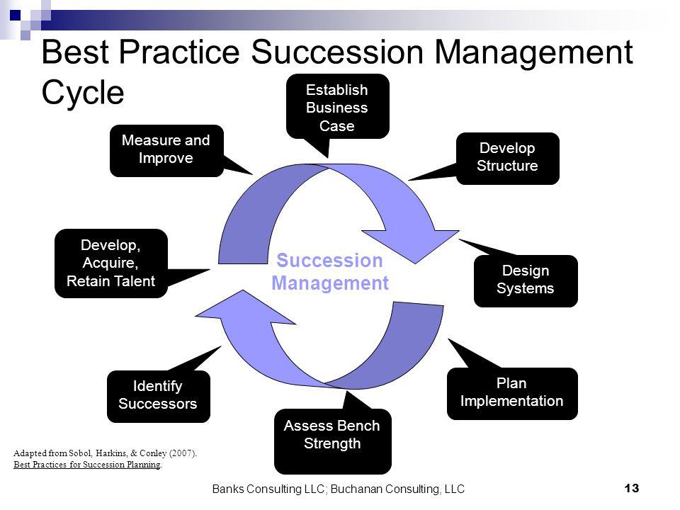 Banks Consulting LLC; Buchanan Consulting, LLC13 Best Practice Succession Management Cycle Succession Management Establish Business Case Develop Struc