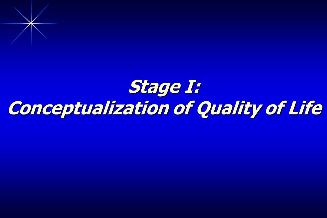 Stage I: Conceptualization of Quality of Life