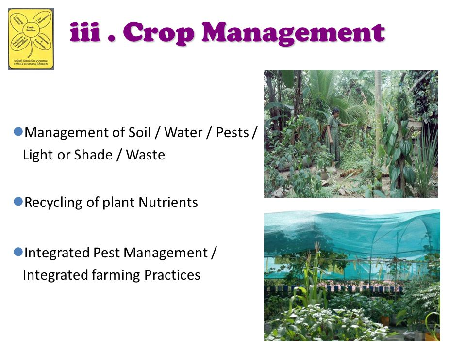 iii. Crop Management Management of Soil / Water / Pests / Light or Shade / Waste Recycling of plant Nutrients Integrated Pest Management / Integrated