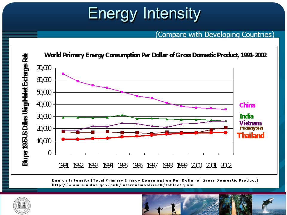 Energy Intensity (Compare with Developing Countries)