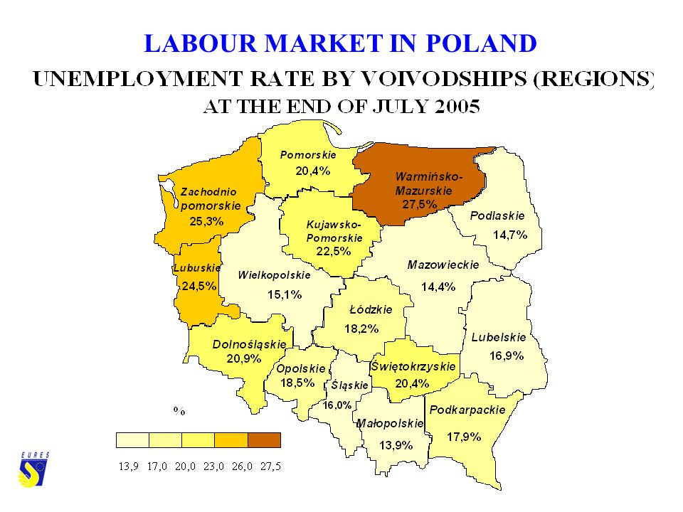 LABOUR MARKET IN POLAND