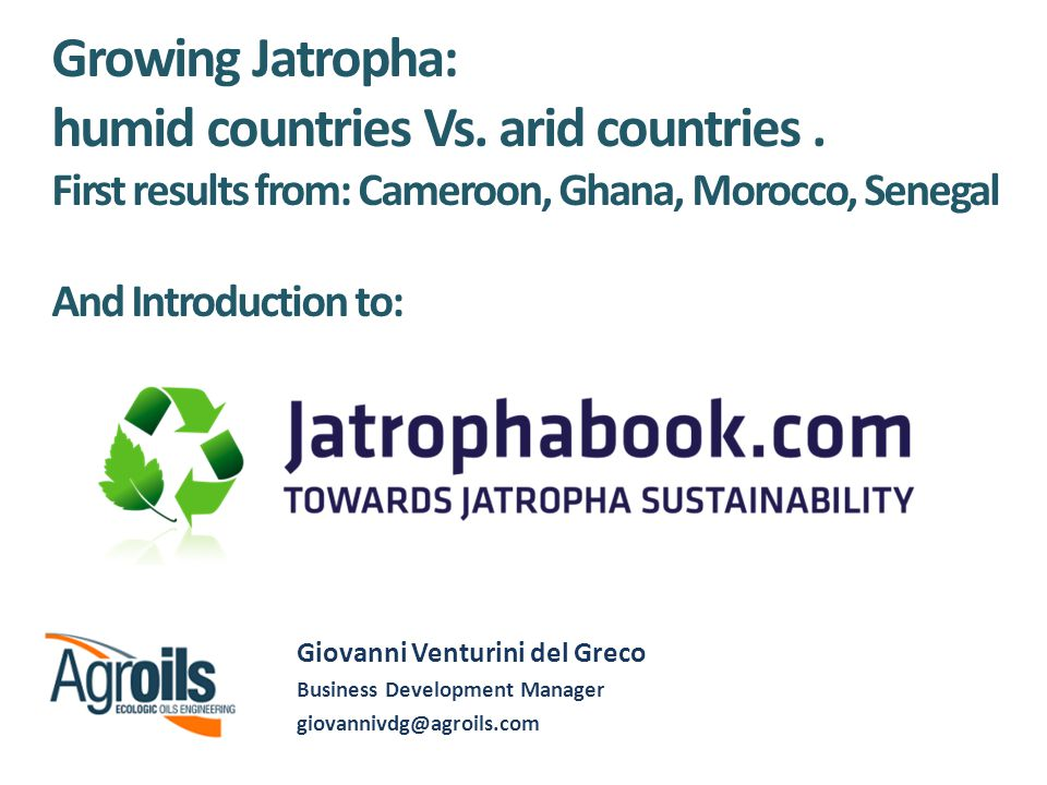 1 Agroils JV projects: – Morocco – Senegal – Ghana – Cameroon Comparison 2 Introduction to Jatrophabook Background Mission Web features Hamburg – 21/09/08