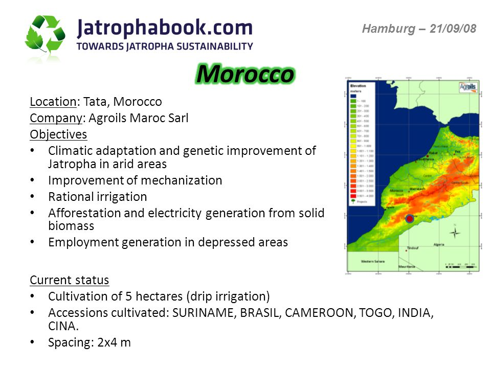 Location: Tata, Morocco Company: Agroils Maroc Sarl Objectives Climatic adaptation and genetic improvement of Jatropha in arid areas Improvement of mechanization Rational irrigation Afforestation and electricity generation from solid biomass Employment generation in depressed areas Current status Cultivation of 5 hectares (drip irrigation) Accessions cultivated: SURINAME, BRASIL, CAMEROON, TOGO, INDIA, CINA.
