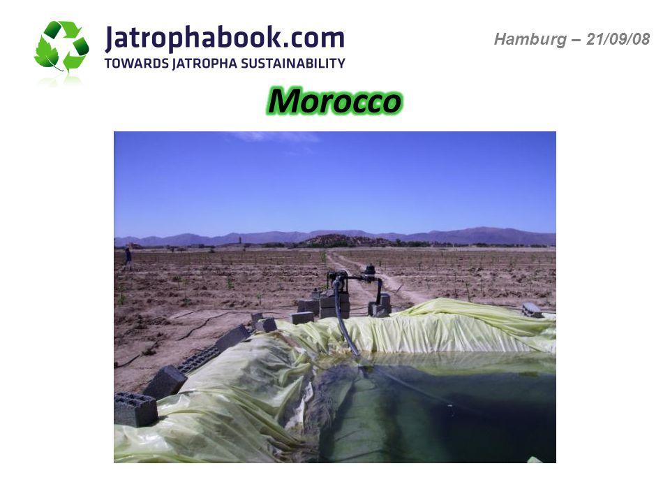 MoroccoSenegalGhanaCameroon Temperature range (°C) Avg.