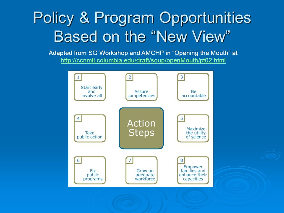 Policy & Program Opportunities Based on the New View Adapted from SG Workshop and AMCHP in Opening the Mouth at http://ccnmtl.columbia.edu/draft/soup/openMouth/pt02.html http://ccnmtl.columbia.edu/draft/soup/openMouth/pt02.html