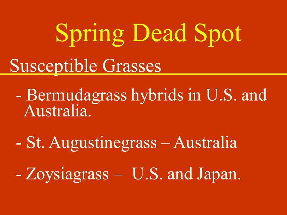 Spring Dead Spot Susceptible Grasses - Bermudagrass hybrids in U.S.
