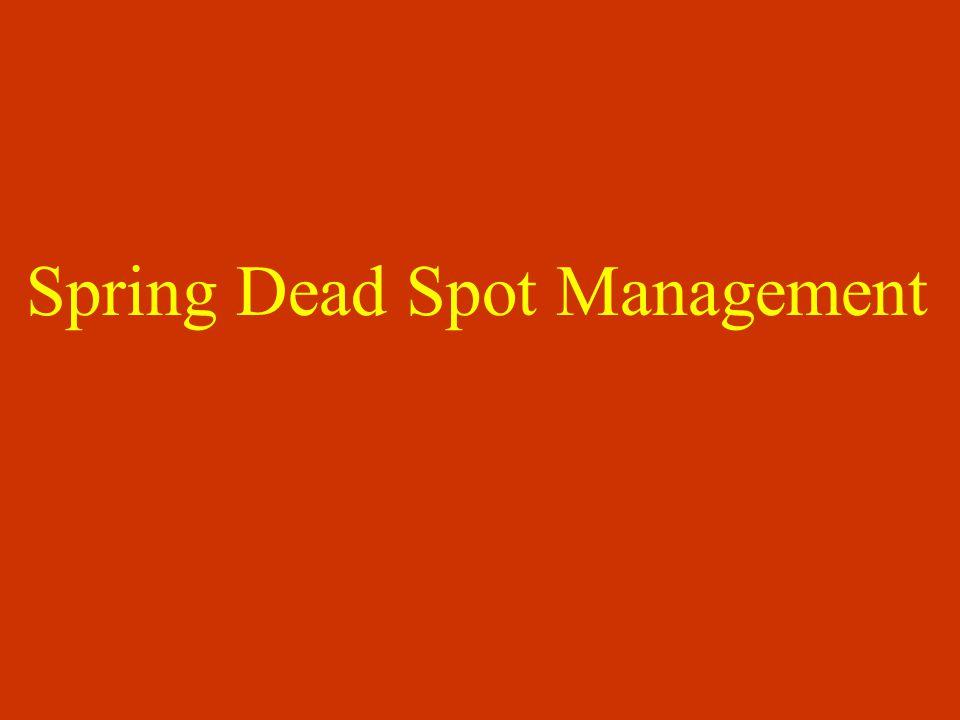 Spring Dead Spot Management