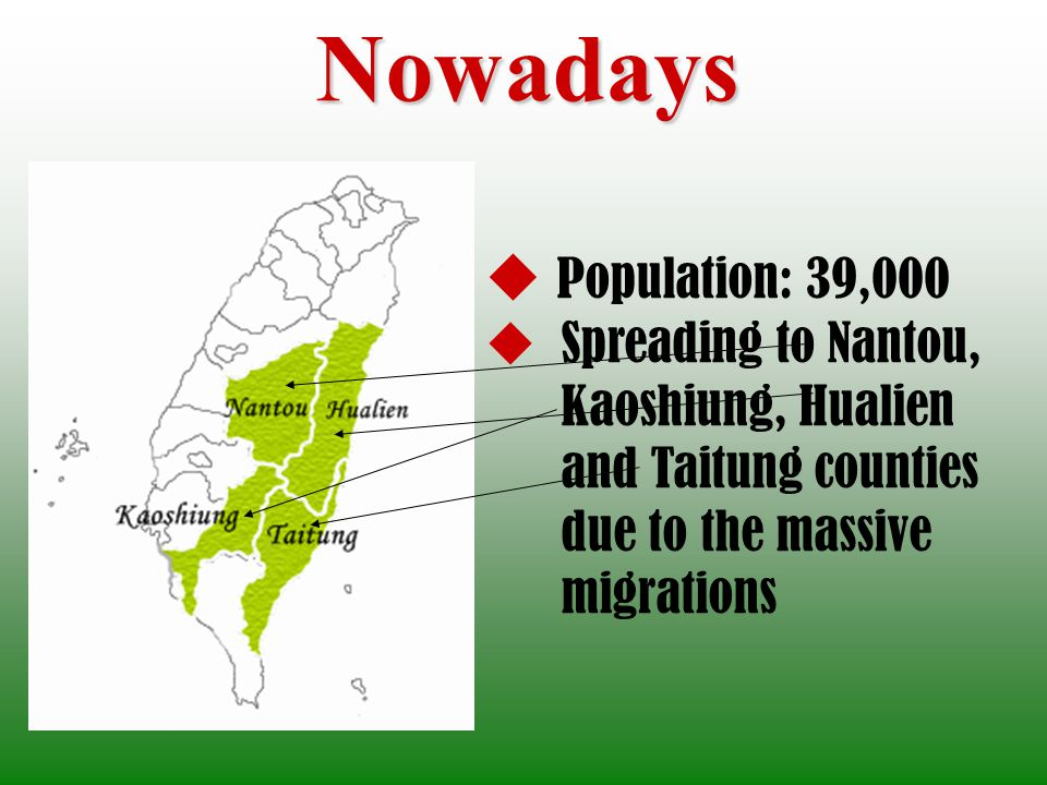 Nowadays Population: 39,000 Spreading to Nantou, Kaoshiung, Hualien and Taitung counties due to the massive migrations