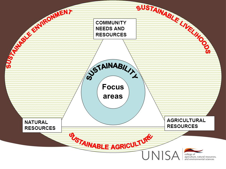 COMMUNITY NEEDS AND RESOURCES AGRICULTURAL RESOURCES NATURAL RESOURCES Focus areas