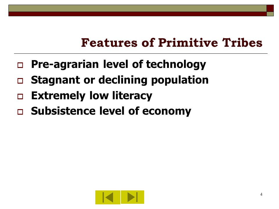4 Features of Primitive Tribes Pre-agrarian level of technology Stagnant or declining population Extremely low literacy Subsistence level of economy