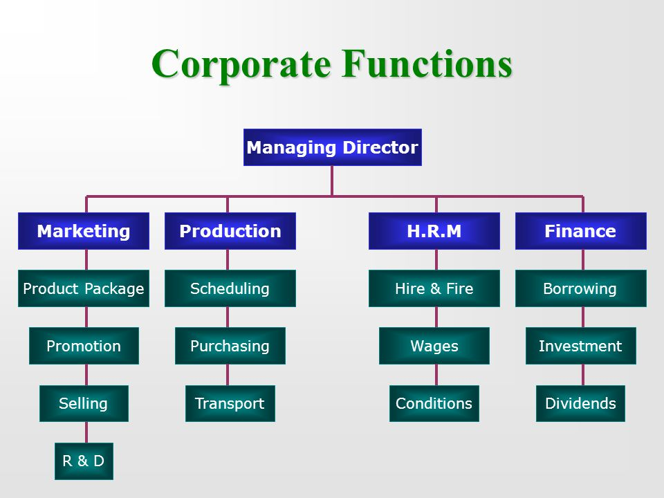 Corporate Functions Managing Director H.R.MFinanceProductionMarketing Product Package Promotion Selling R & D Scheduling Purchasing Transport Borrowin