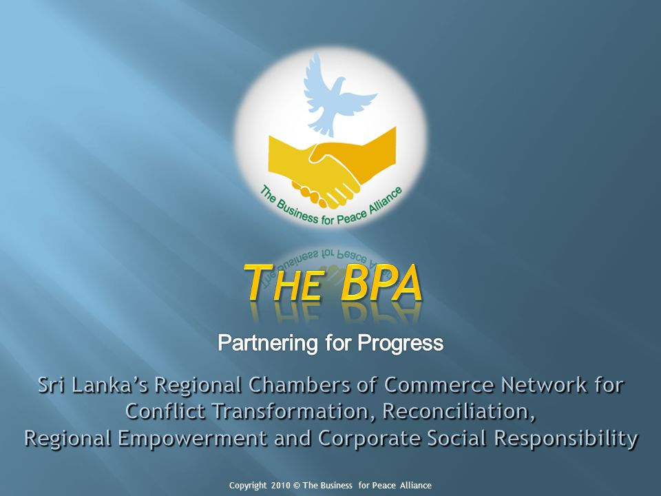Copyright 2010 © The Business for Peace Alliance