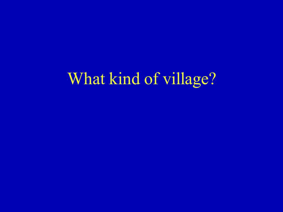 What kind of village