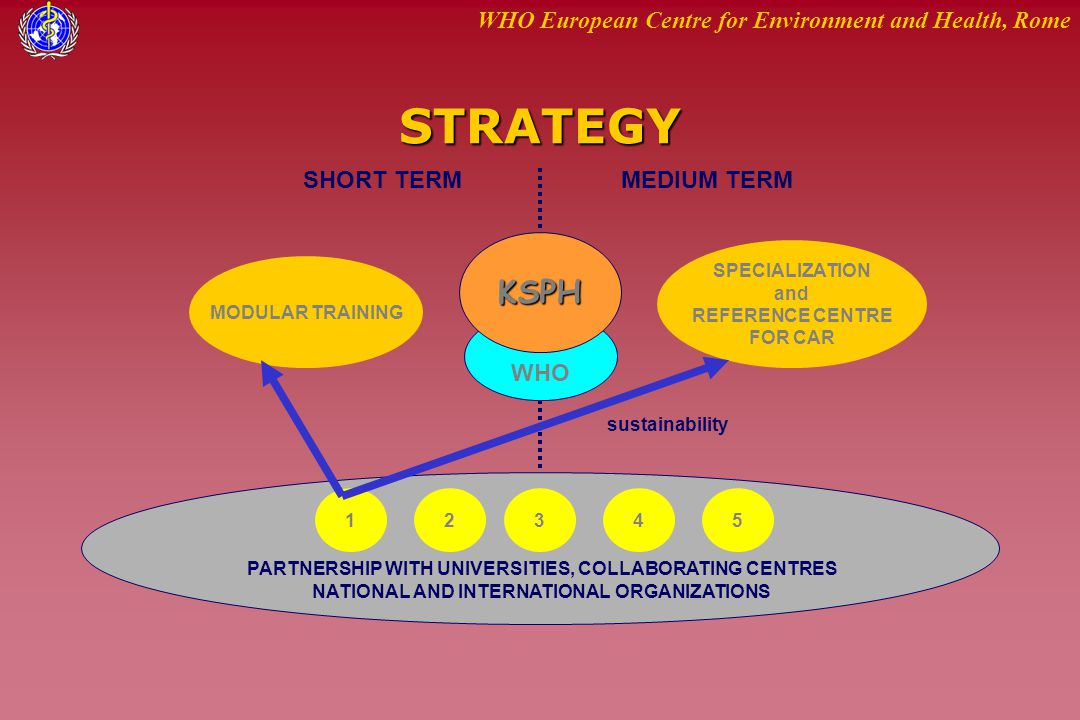 WHO European Centre for Environment and Health, RomeSTRATEGY KSPH SHORT TERMMEDIUM TERM MODULAR TRAINING SPECIALIZATION and REFERENCE CENTRE FOR CAR 1